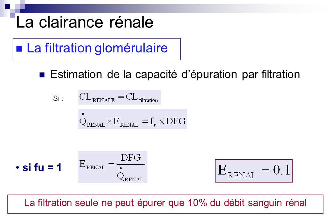 si fu = 1 La clairance rénale La filtration glomérulaire Estimation de la capacité dépuration par filtration Si : La filtration seule ne peut épurer que 10% du débit sanguin rénal
