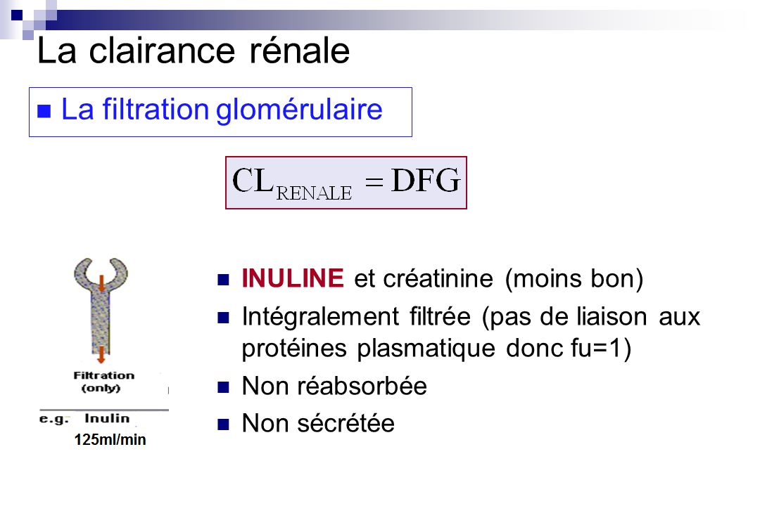 La clairance rénale La filtration glomérulaire INULINE et créatinine (moins bon) Intégralement filtrée (pas de liaison aux protéines plasmatique donc fu=1) Non réabsorbée Non sécrétée
