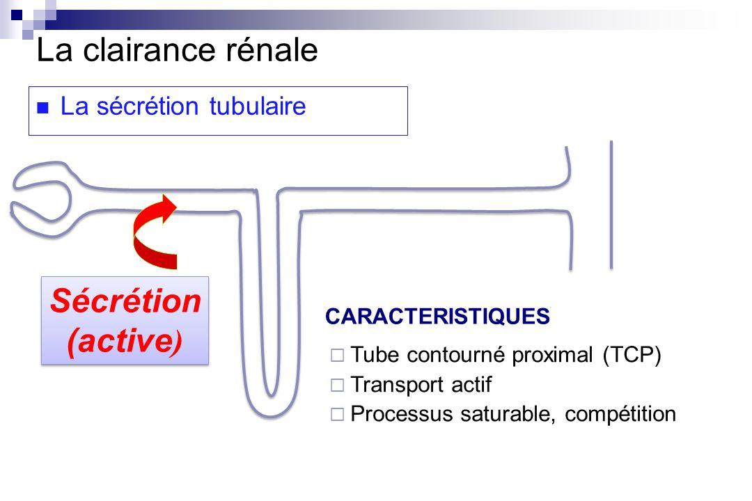 La clairance rénale La sécrétion tubulaire CARACTERISTIQUES Tube contourné proximal (TCP) Transport actif Processus saturable, compétition Sécrétion (active ) Sécrétion (active )