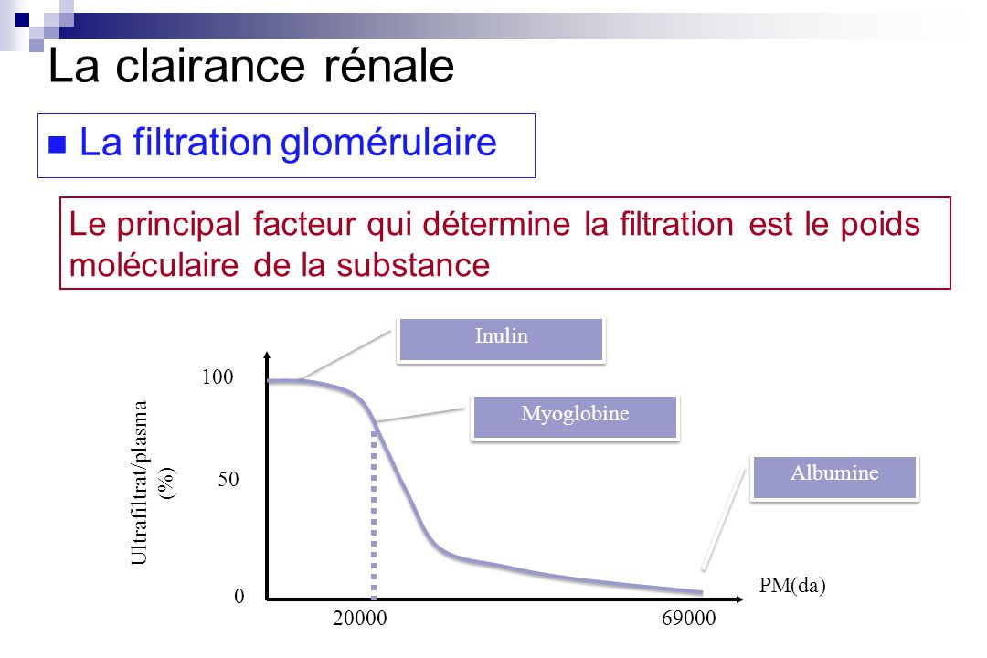 Le principal facteur qui détermine la filtration est le poids moléculaire de la substance PM(da) Ultrafiltrat/plasma (%) 0 100 50 2000069000 Albumine