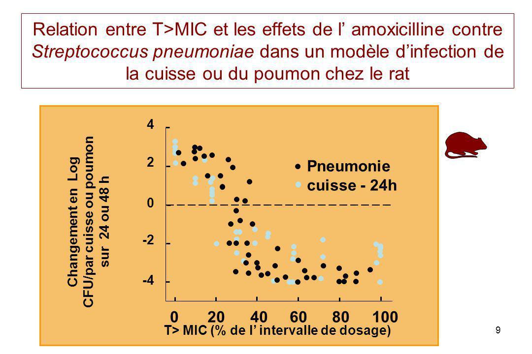 PL toutain Ecole Vétérinaire Toulouse9 Relation entre T>MIC et les effets de l amoxicilline contre Streptococcus pneumoniae dans un modèle dinfection de la cuisse ou du poumon chez le rat