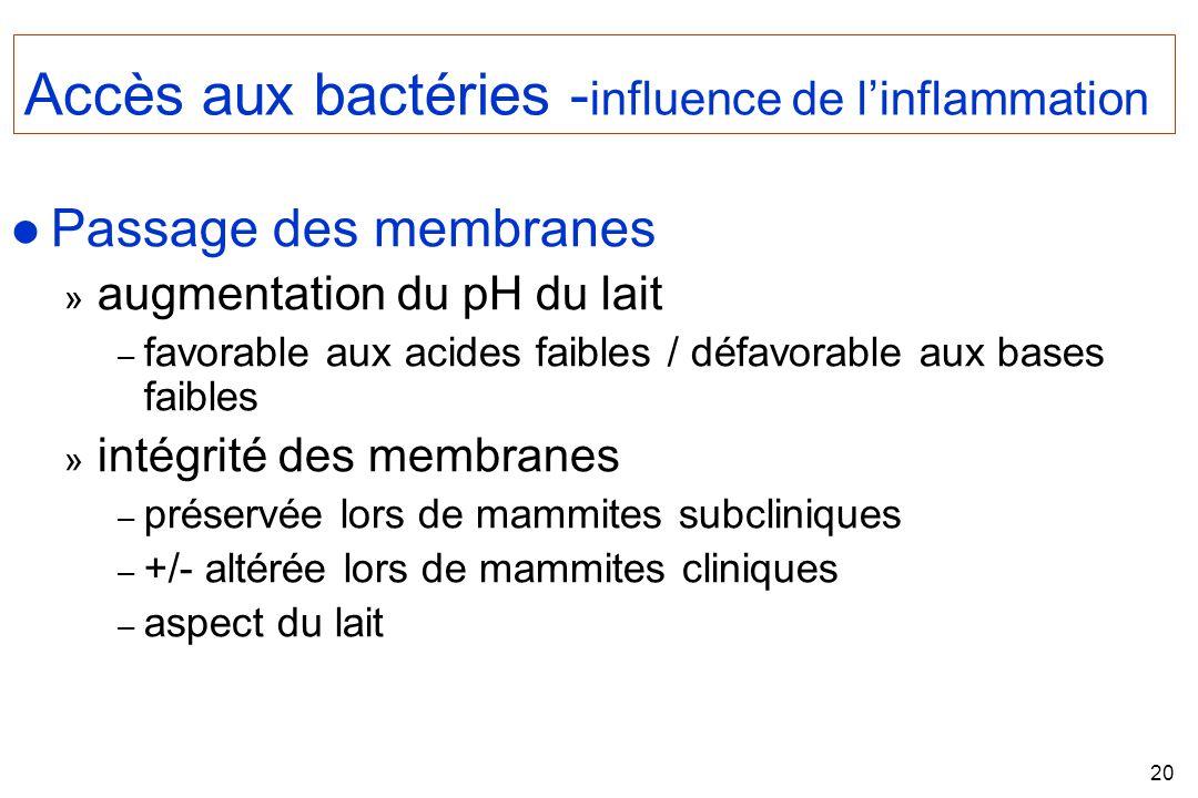 20 Accès aux bactéries - influence de linflammation l Passage des membranes » augmentation du pH du lait – favorable aux acides faibles / défavorable aux bases faibles » intégrité des membranes – préservée lors de mammites subcliniques – +/- altérée lors de mammites cliniques – aspect du lait