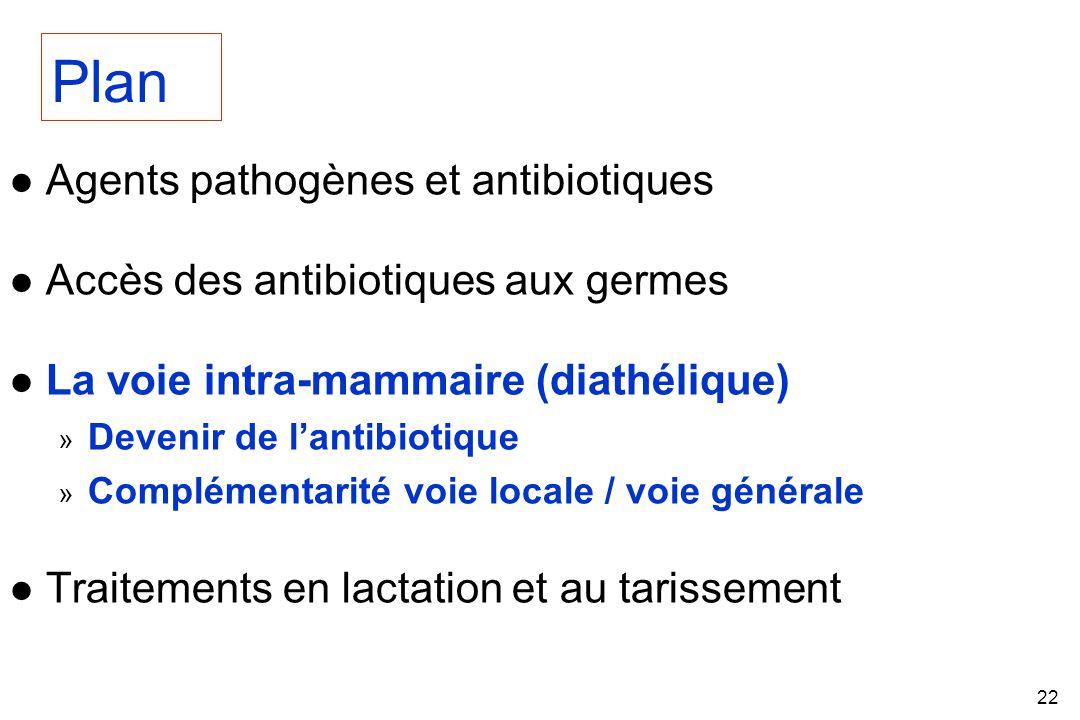 22 l Agents pathogènes et antibiotiques l Accès des antibiotiques aux germes l La voie intra-mammaire (diathélique) » Devenir de lantibiotique » Complémentarité voie locale / voie générale l Traitements en lactation et au tarissement Plan