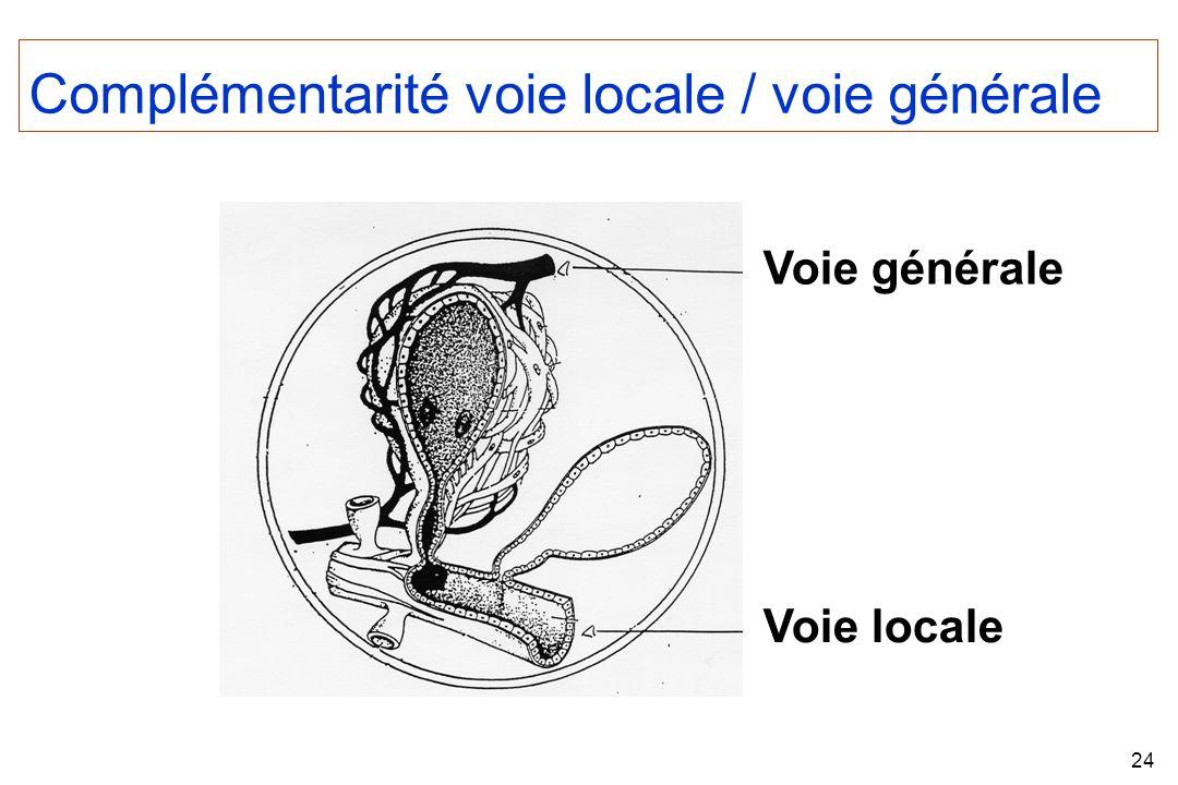 24 Voie générale Voie locale Complémentarité voie locale / voie générale