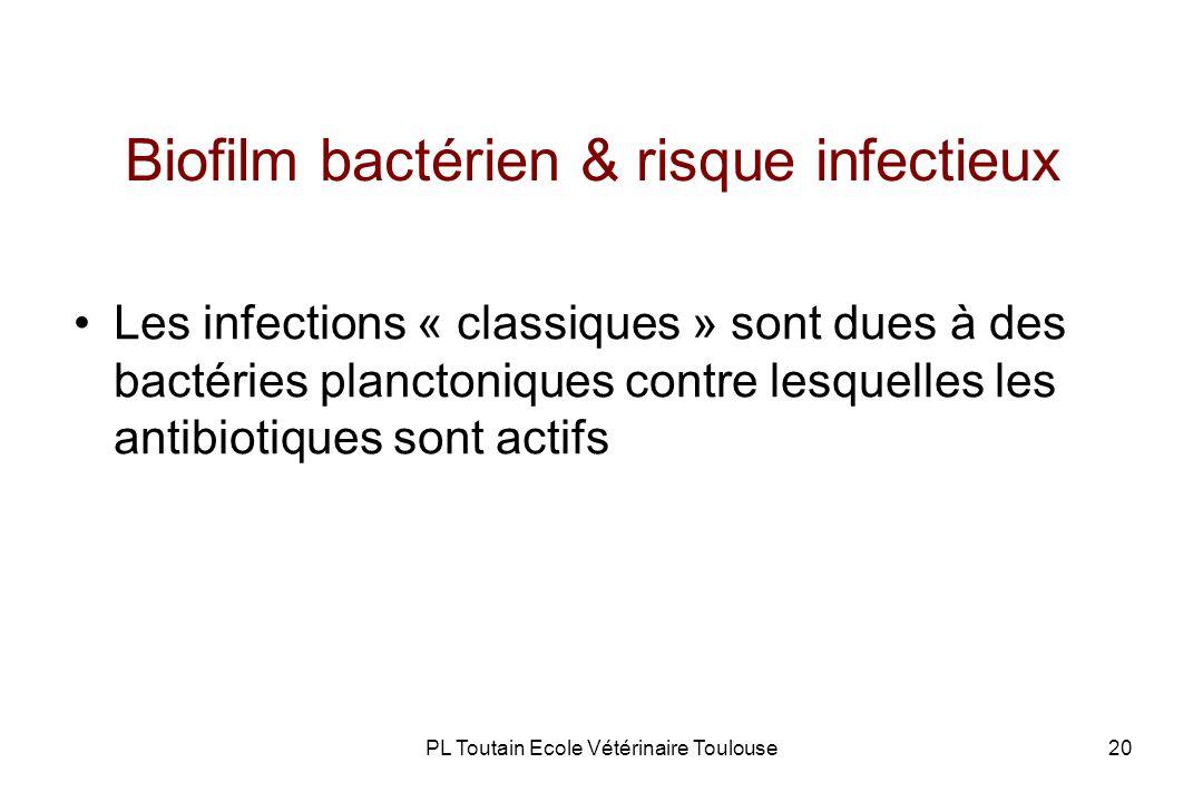 PL Toutain Ecole Vétérinaire Toulouse20 Biofilm bactérien & risque infectieux Les infections « classiques » sont dues à des bactéries planctoniques contre lesquelles les antibiotiques sont actifs