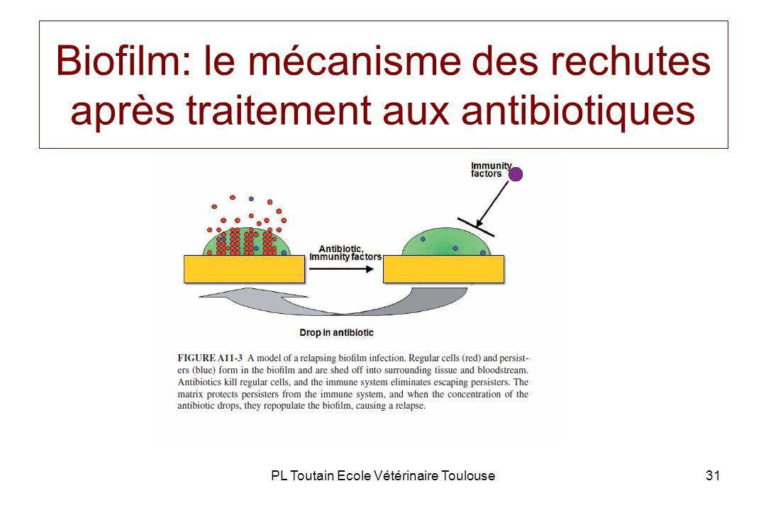 PL Toutain Ecole Vétérinaire Toulouse31 Biofilm: le mécanisme des rechutes après traitement aux antibiotiques