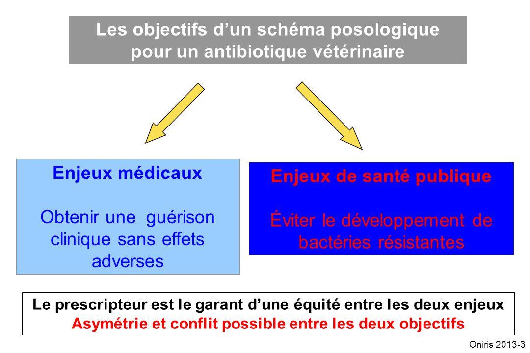 Les objectifs dun schéma posologique pour un antibiotique vétérinaire Enjeux médicaux Obtenir une guérison clinique sans effets adverses Enjeux de san