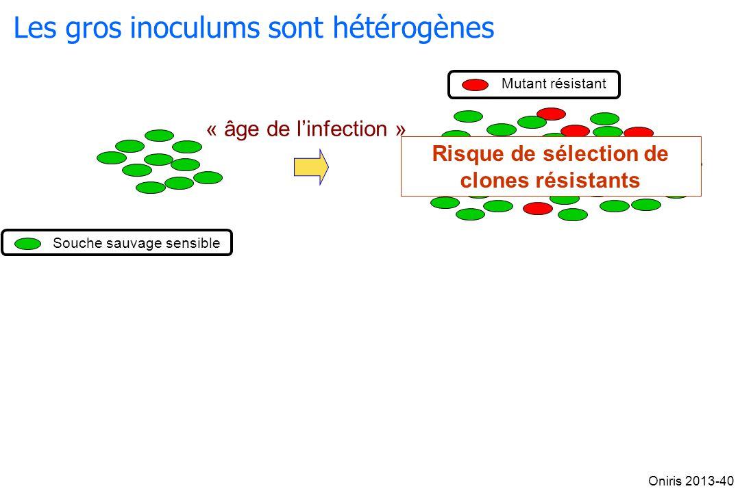 Les gros inoculums sont hétérogènes « âge de linfection » Souche sauvage sensible Mutant résistant Risque de sélection de clones résistants Oniris 201