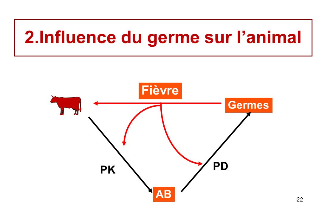 22 2.Influence du germe sur lanimal Germes AB PK PD Fièvre