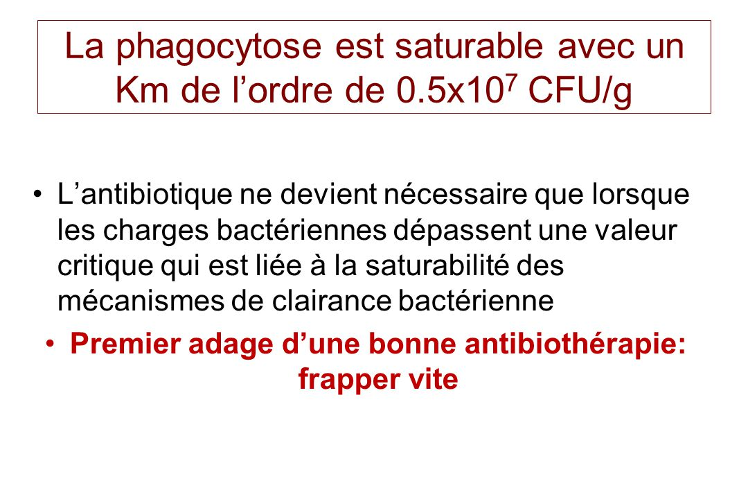 La phagocytose est saturable avec un Km de lordre de 0.5x10 7 CFU/g Lantibiotique ne devient nécessaire que lorsque les charges bactériennes dépassent