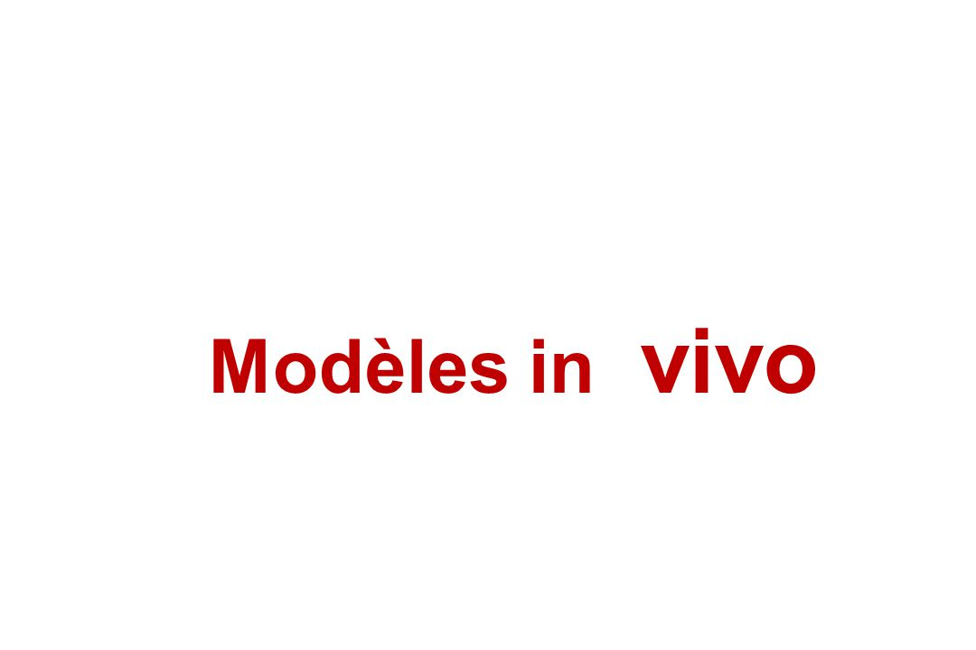 Modèles in vivo