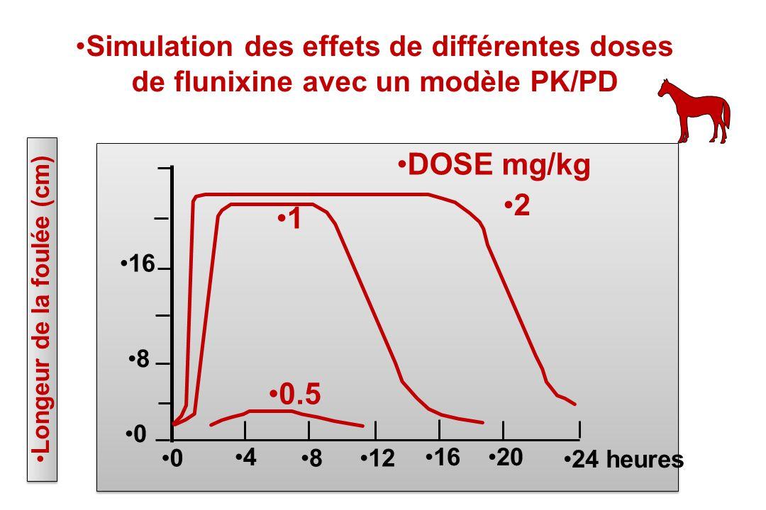 8 0 16 0 4 812 1620 24 heures Longeur de la foulée (cm) 1 0.5 2 DOSE mg/kg Simulation des effets de différentes doses de flunixine avec un modèle PK/P