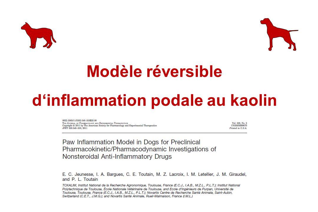 Modèle réversible dinflammation podale au kaolin
