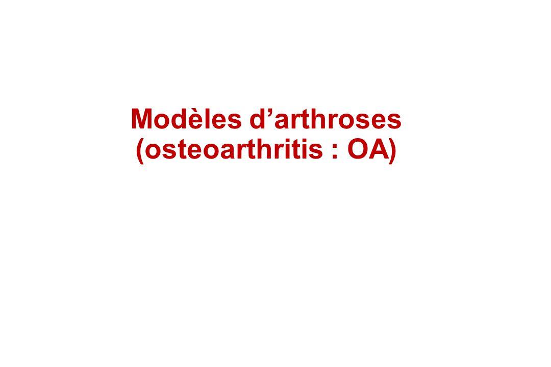 Modèles darthroses (osteoarthritis : OA)