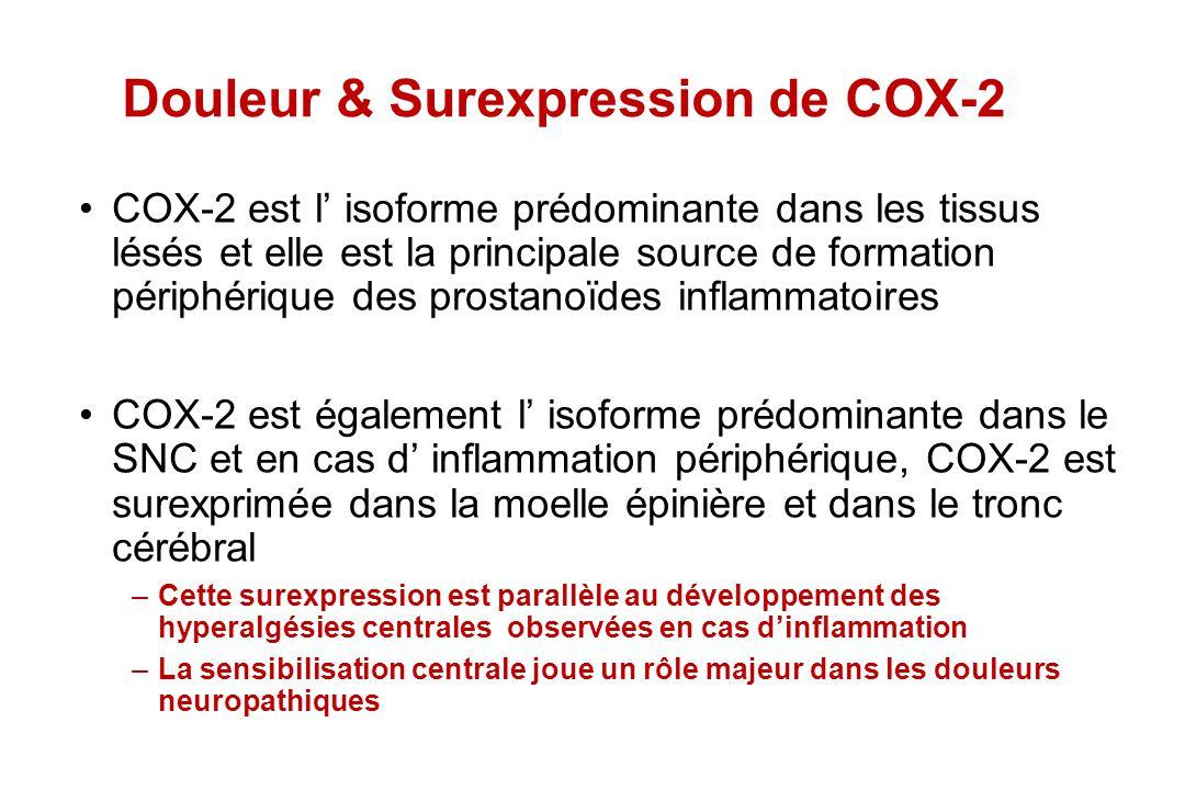 Douleur & Surexpression de COX-2 COX-2 est l isoforme prédominante dans les tissus lésés et elle est la principale source de formation périphérique de
