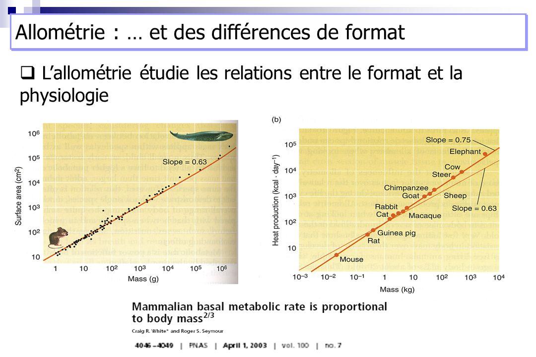 Lallométrie étudie les relations entre le format et la physiologie