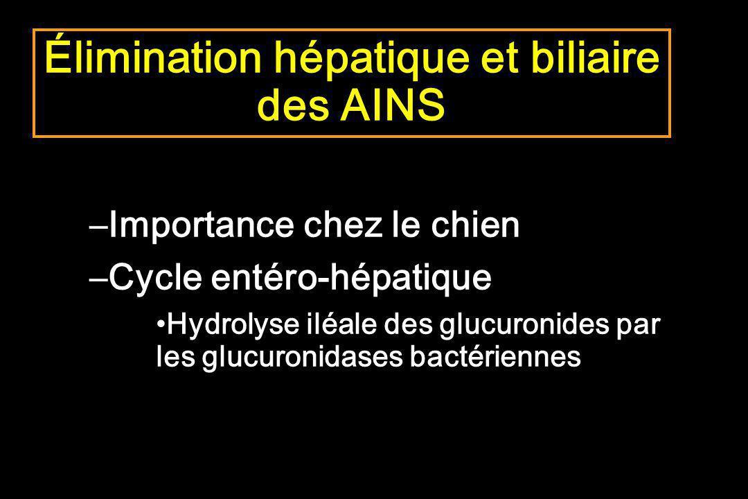 Élimination hépatique et biliaire des AINS –Importance chez le chien –Cycle entéro-hépatique Hydrolyse iléale des glucuronides par les glucuronidases