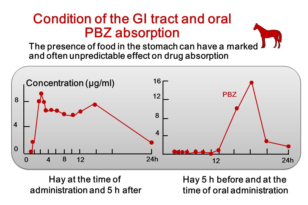 Condition of the GI tract and oral PBZ absorption The presence of food in the stomach can have a marked and often unpredictable effect on drug absorpt