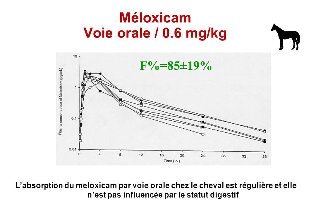 Méloxicam Voie orale / 0.6 mg/kg F%=85±19% Labsorption du meloxicam par voie orale chez le cheval est régulière et elle nest pas influencée par le sta