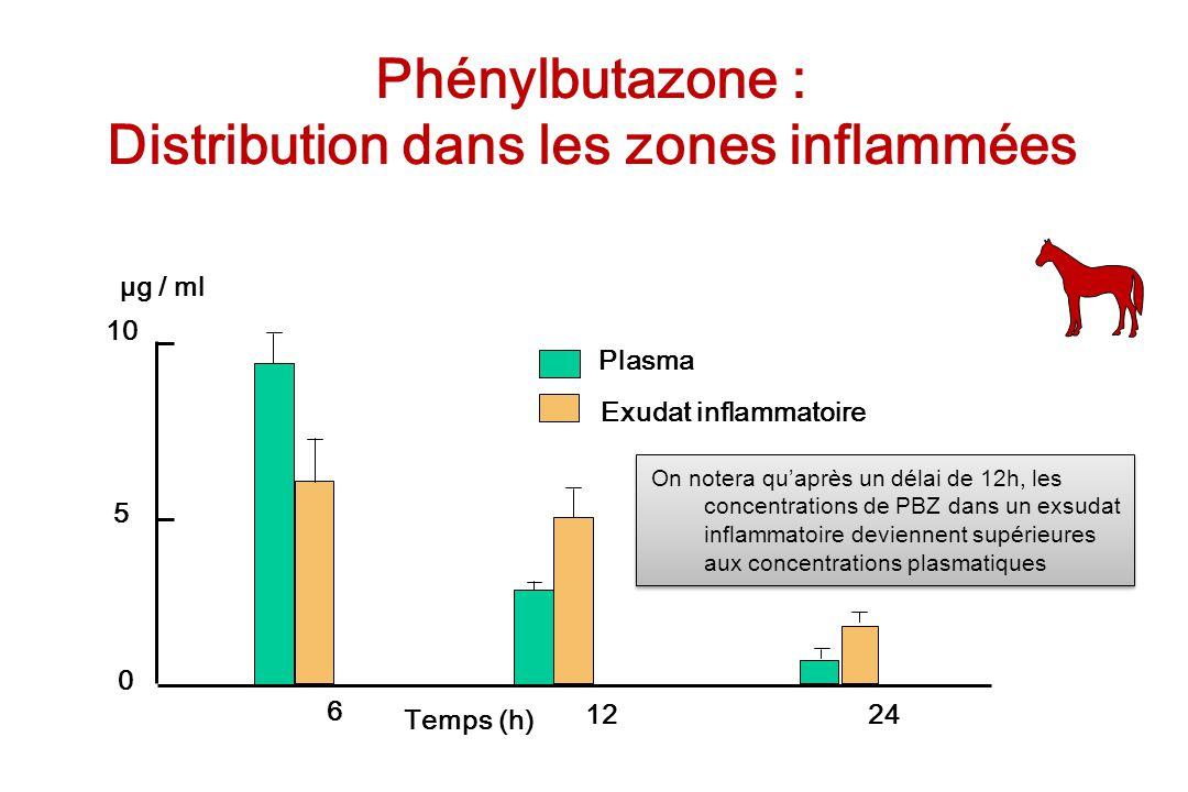 Phénylbutazone : Distribution dans les zones inflammées 10 5 0 6 1224 Plasma Exudat inflammatoire Temps (h) µg / ml On notera quaprès un délai de 12h,