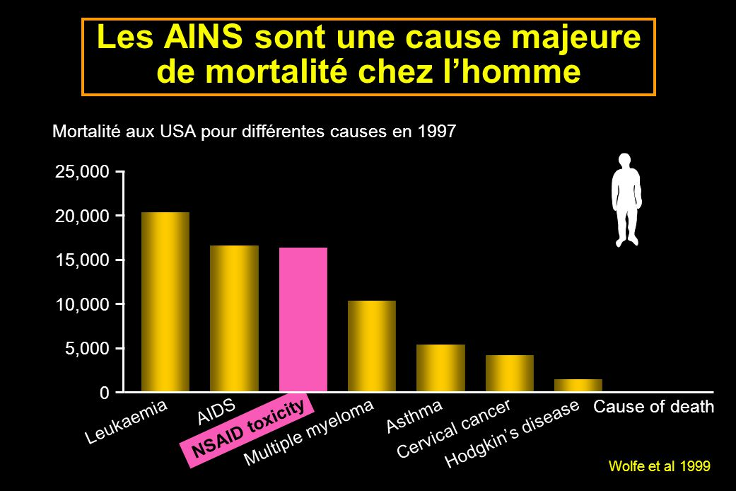 Les zones muqueuses M.oesophagienne: non glandulaire M.