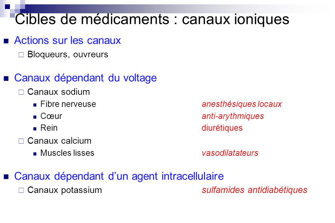 Cibles de médicaments : canaux ioniques Actions sur les canaux Bloqueurs, ouvreurs Canaux dépendant du voltage Canaux sodium Fibre nerveuseanesthésiqu