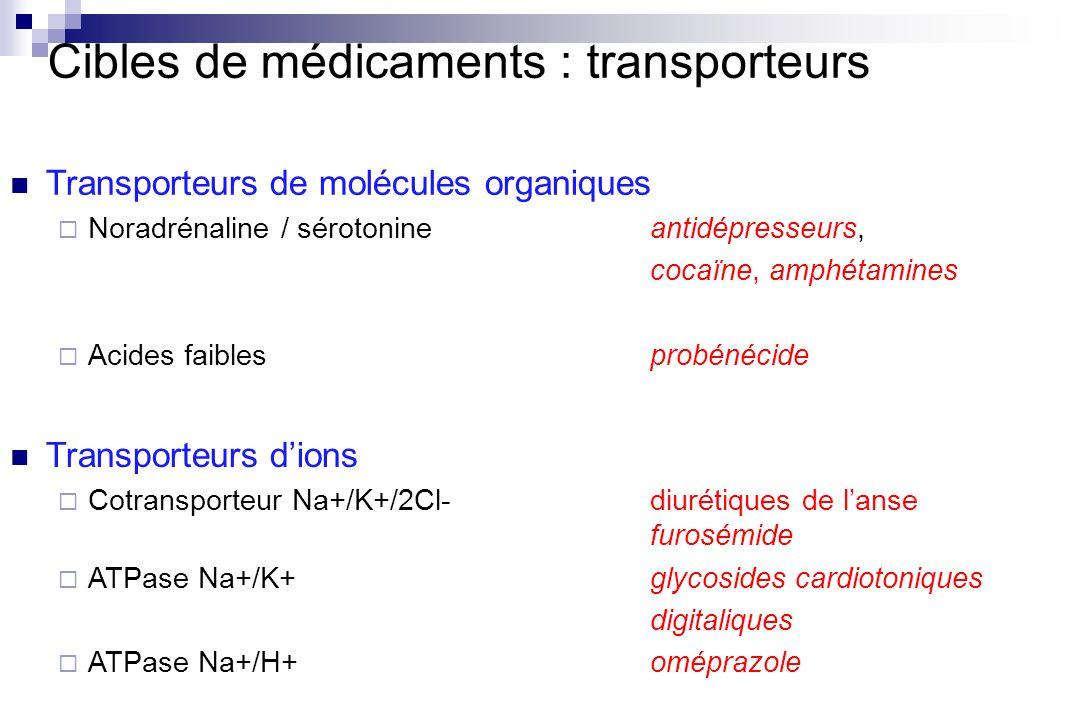 Cibles de médicaments : transporteurs Transporteurs de molécules organiques Noradrénaline / sérotonineantidépresseurs, cocaïne, amphétamines Acides fa