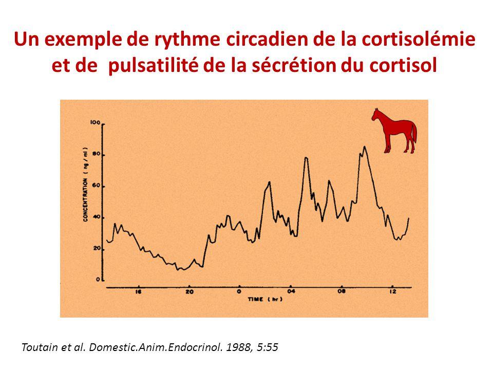 Un exemple de rythme circadien de la cortisolémie et de pulsatilité de la sécrétion du cortisol Toutain et al.