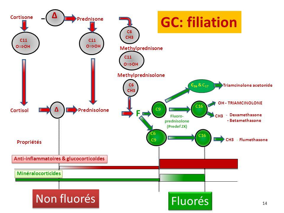 Cortisone Prednisone Fluoro- prednisolone (Predef 2X) C9 C16 C6 CH3 C11 O OH Methylprednisone Methylprednisolone C11 O OH C6 C9 CH3 - Flumethasone OH - TRIAMCINOLONE CH3 - Dexamethasone - Betamethasone C11 O OH Propriétés Anti-inflammatoires & glucocorticoïdes Minéralocorticïdes Prednisolone F Cortisol C 16 & C 17 Triamcinolone acetonide Δ Δ C6 CH3 14 GC: filiation Non fluorés Fluorés