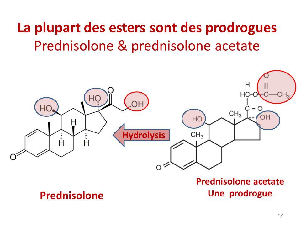 La plupart des esters sont des prodrogues Prednisolone & prednisolone acetate Prednisolone Prednisolone acetate Une prodrogue Hydrolysis 23