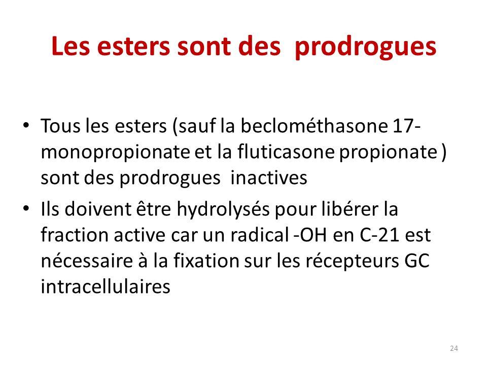 Les esters sont des prodrogues Tous les esters (sauf la beclométhasone 17- monopropionate et la fluticasone propionate ) sont des prodrogues inactives Ils doivent être hydrolysés pour libérer la fraction active car un radical -OH en C-21 est nécessaire à la fixation sur les récepteurs GC intracellulaires 24