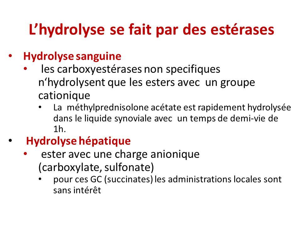 Hydrolyse sanguine les carboxyestérases non specifiques nhydrolysent que les esters avec un groupe cationique La méthylprednisolone acétate est rapidement hydrolysée dans le liquide synoviale avec un temps de demi-vie de 1h.