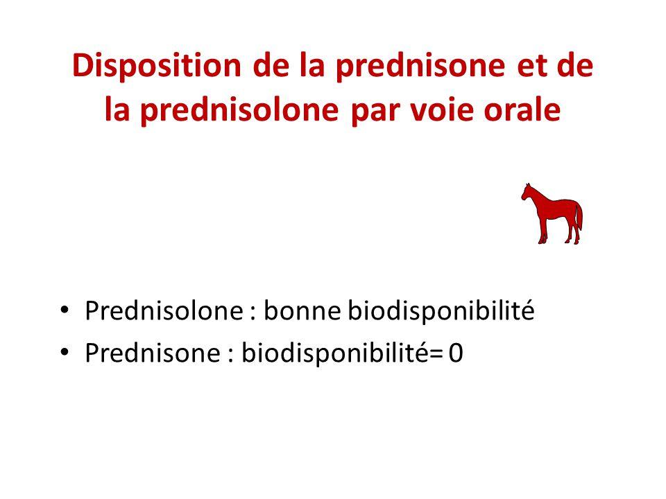 Disposition de la prednisone et de la prednisolone par voie orale Prednisolone : bonne biodisponibilité Prednisone : biodisponibilité= 0