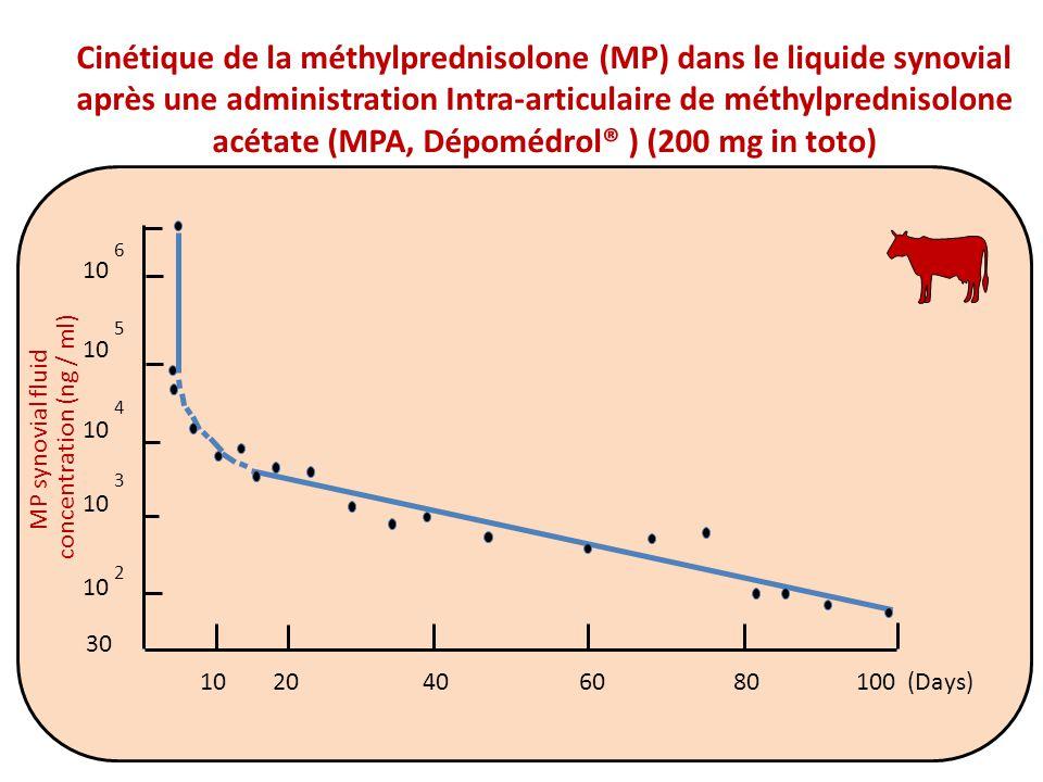Cinétique de la méthylprednisolone (MP) dans le liquide synovial après une administration Intra-articulaire de méthylprednisolone acétate (MPA, Dépomédrol® ) (200 mg in toto) 10 MP synovial fluid concentration (ng / ml) 10 2 3 4 5 6 20406080100 (Days)10 30