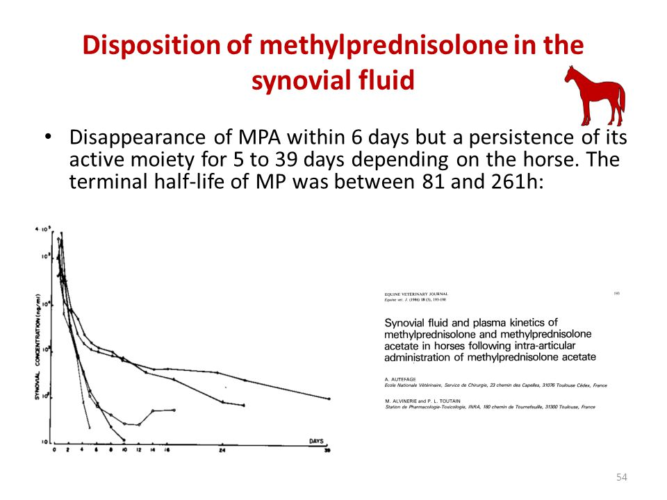 Disposition of methylprednisolone in the synovial fluid 54 Disappearance of MPA within 6 days but a persistence of its active moiety for 5 to 39 days