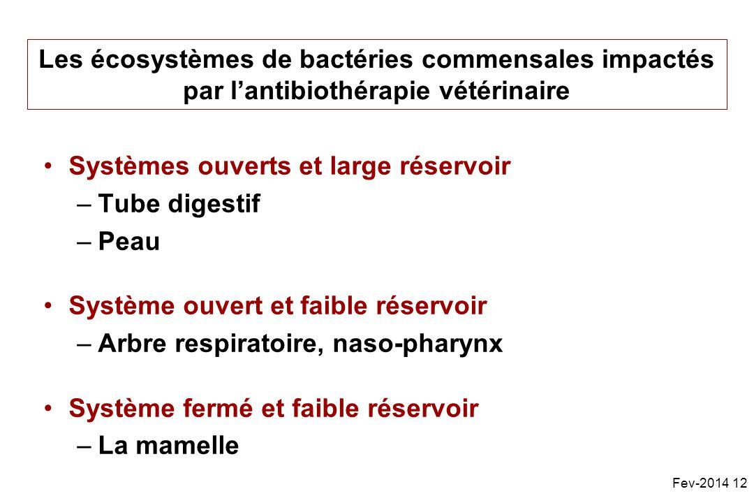 Les écosystèmes de bactéries commensales impactés par lantibiothérapie vétérinaire Systèmes ouverts et large réservoir –Tube digestif –Peau Système ouvert et faible réservoir –Arbre respiratoire, naso-pharynx Système fermé et faible réservoir –La mamelle Fev-2014 12