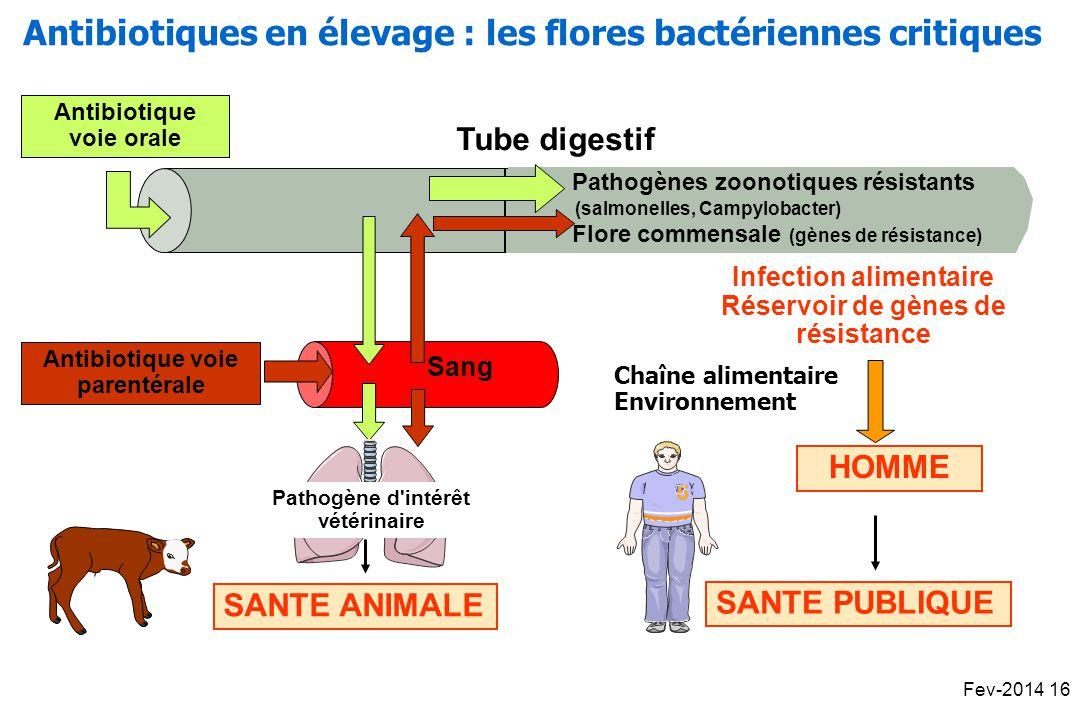 Tube digestif Sang Antibiotique voie orale SANTE ANIMALE Pathogène d intérêt vétérinaire Antibiotique voie parentérale Pathogènes zoonotiques résistants (salmonelles, Campylobacter) Flore commensale (gènes de résistance) Infection alimentaire Réservoir de gènes de résistance SANTE PUBLIQUE HOMME 55 Chaîne alimentaire Environnement Antibiotiques en élevage : les flores bactériennes critiques Fev-2014 16