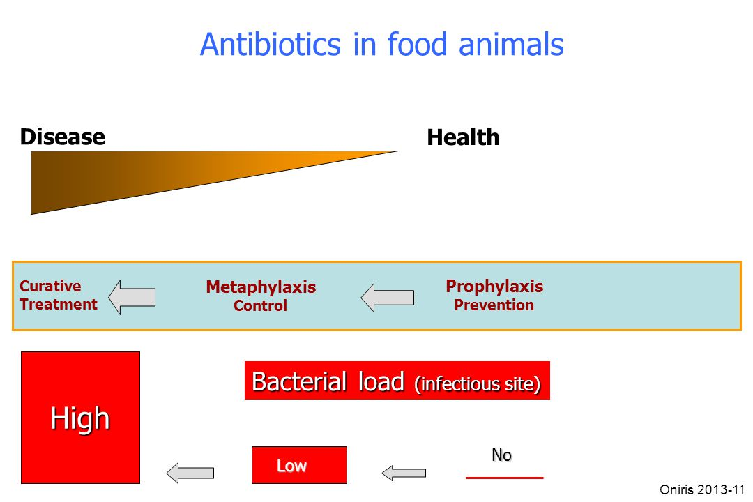 Disease Health High Bacterial load (infectious site) Low No Curative Treatment Metaphylaxis Control Prophylaxis Prevention Antibiotics in food animals