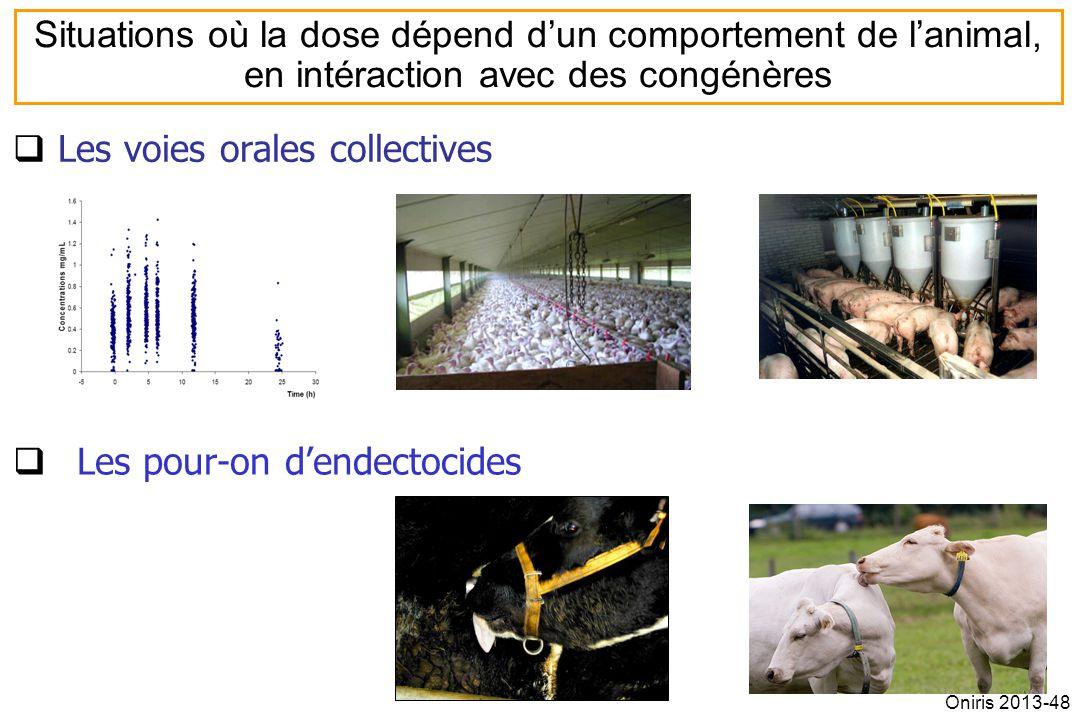 Les voies orales collectives Les pour-on dendectocides Situations où la dose dépend dun comportement de lanimal, en intéraction avec des congénères Oniris 2013-48