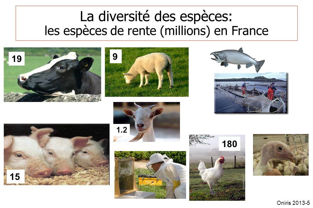 La diversité des espèces: les espèces de rente (millions) en France 9 15 180 1.2 19 Oniris 2013-5