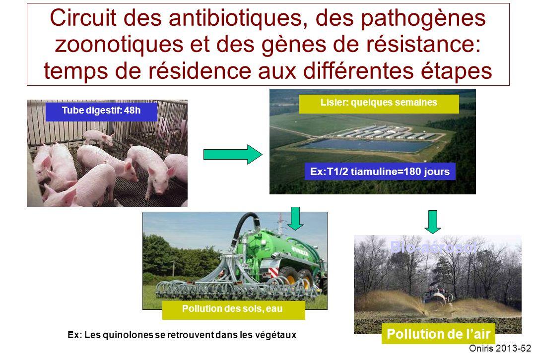 Circuit des antibiotiques, des pathogènes zoonotiques et des gènes de résistance: temps de résidence aux différentes étapes Tube digestif: 48h Lisier: