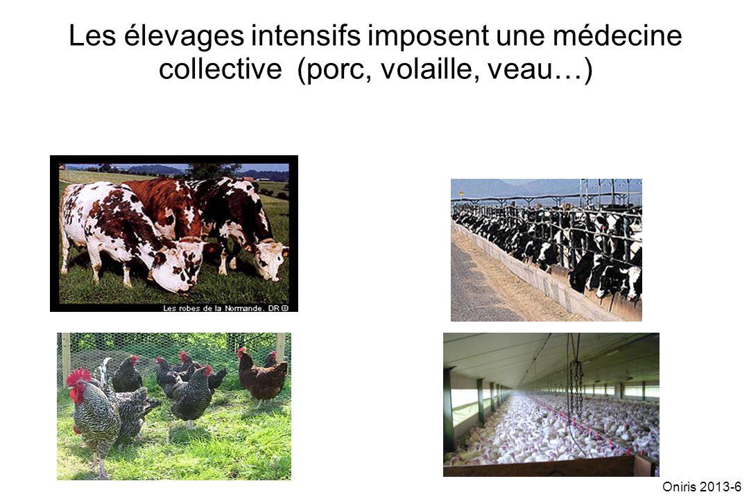 Au cours de lévolution de linfection Traitements précoces versus tardifs (conventionnels) Oniris 2013-27