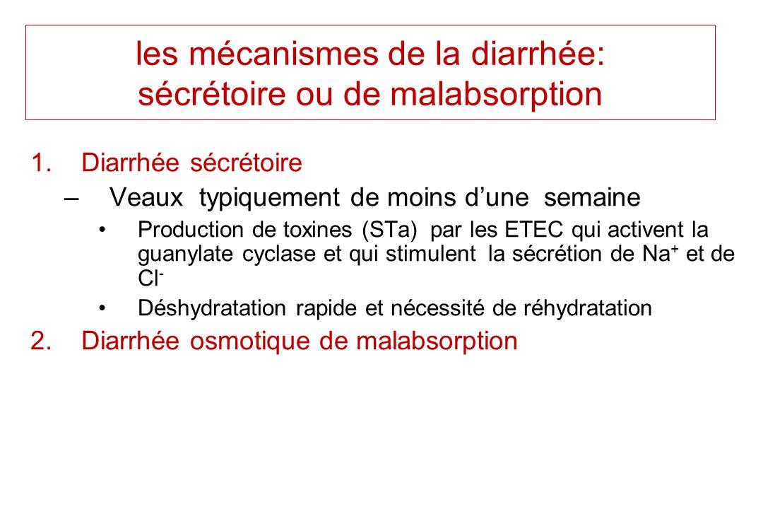 les mécanismes de la diarrhée: sécrétoire ou de malabsorption 1.Diarrhée sécrétoire –Veaux typiquement de moins dune semaine Production de toxines (ST