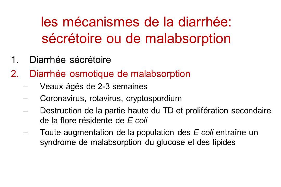 les mécanismes de la diarrhée: sécrétoire ou de malabsorption 1.Diarrhée sécrétoire 2.Diarrhée osmotique de malabsorption –Veaux âgés de 2-3 semaines