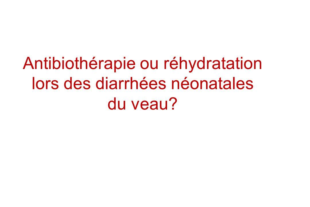 Antibiothérapie ou réhydratation lors des diarrhées néonatales du veau?