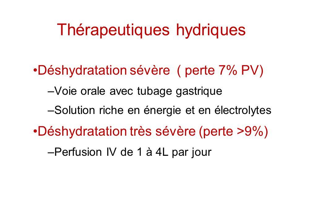 Thérapeutiques hydriques Déshydratation sévère ( perte 7% PV) –Voie orale avec tubage gastrique –Solution riche en énergie et en électrolytes Déshydra
