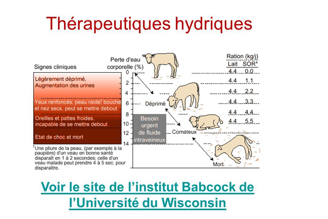 Thérapeutiques hydriques Voir le site de linstitut Babcock de lUniversité du Wisconsin