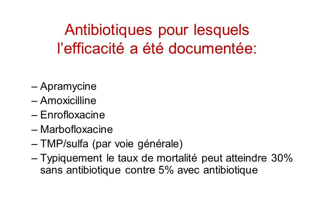 Antibiotiques pour lesquels lefficacité a été documentée: –Apramycine –Amoxicilline –Enrofloxacine –Marbofloxacine –TMP/sulfa (par voie générale) –Typ