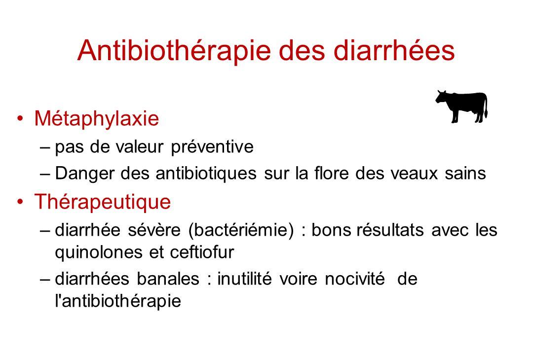 Antibiothérapie des diarrhées Métaphylaxie –pas de valeur préventive –Danger des antibiotiques sur la flore des veaux sains Thérapeutique –diarrhée sé