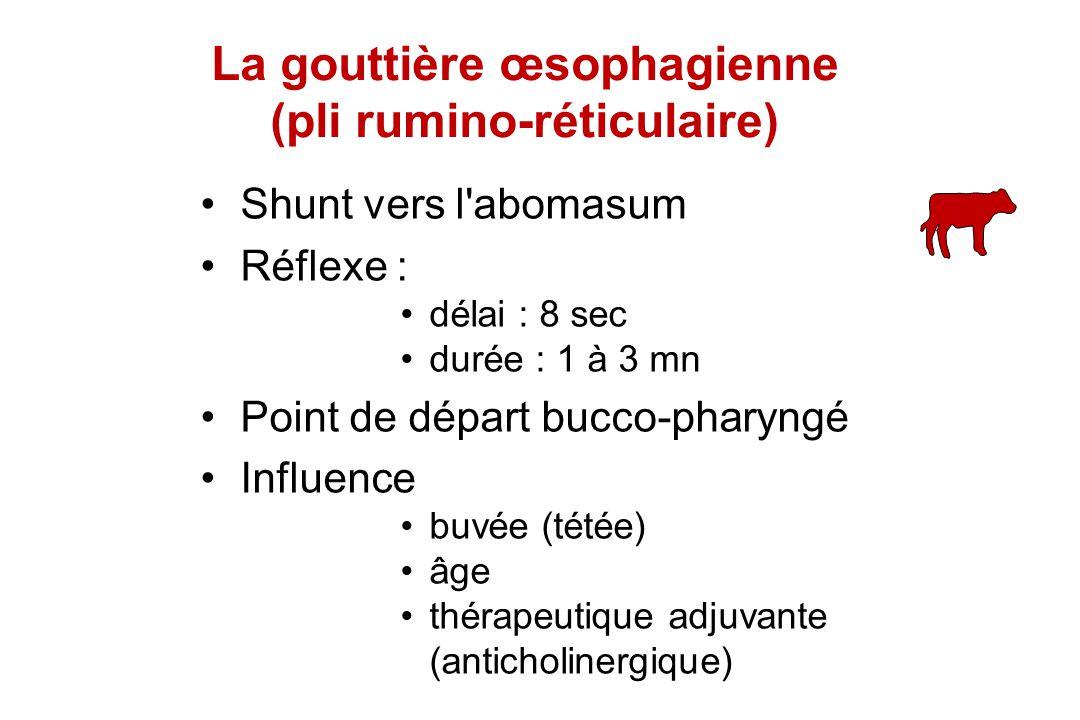 Shunt vers l'abomasum Réflexe : délai : 8 sec durée : 1 à 3 mn Point de départ bucco-pharyngé Influence buvée (tétée) âge thérapeutique adjuvante (ant